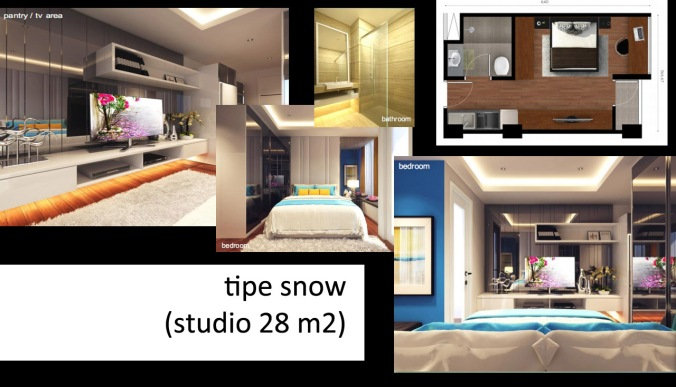 tipe snow studio